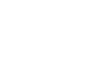 Weegot Single Logo